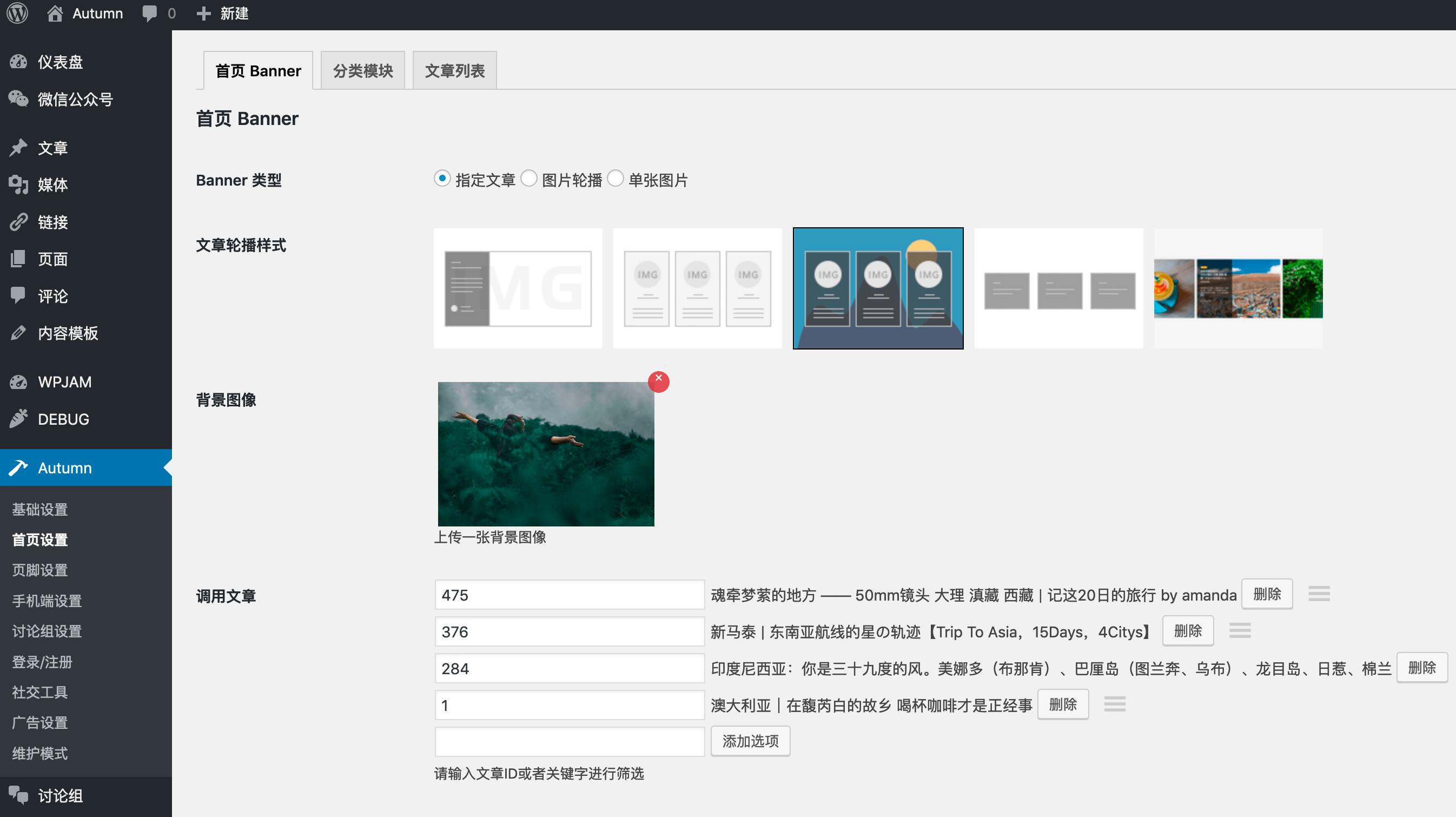 【WordPress】Autumn-Pro 2.4去授权破解版下载插图(22)