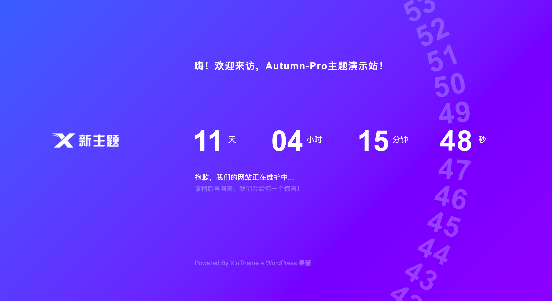 【WordPress】Autumn-Pro 2.4去授权破解版下载插图(20)